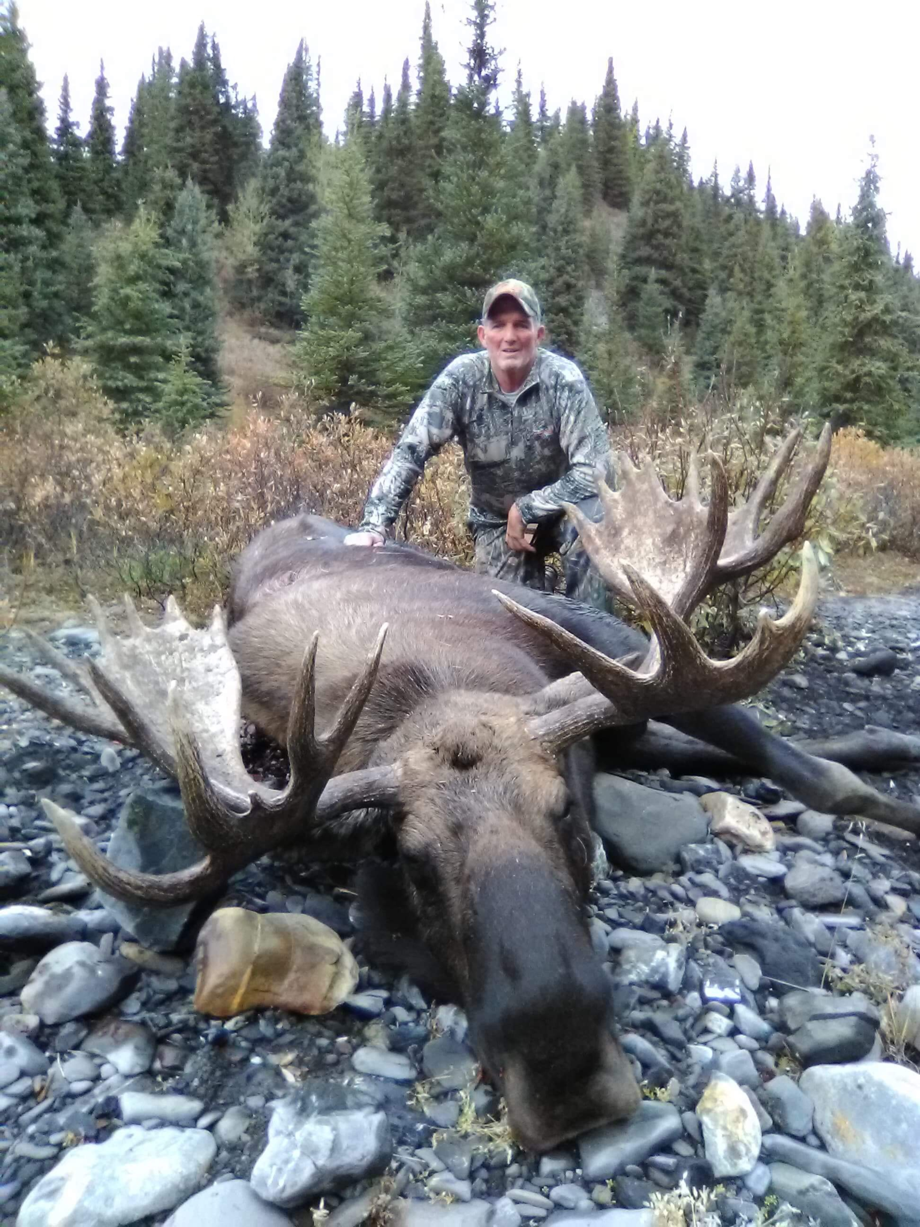 idaho-wild-sheep-canadian-moose-hunt-1