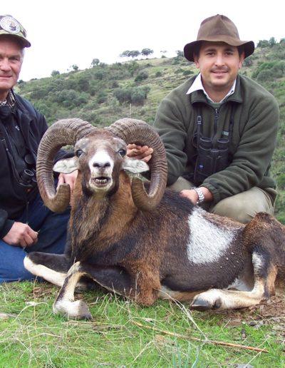 Espacaza-Mouflon-pic-1