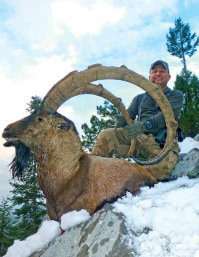 ibex-idaho-wild-sheep-auction-2