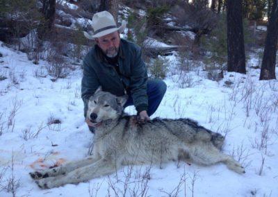 Scott & Wolf