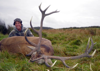 stag074_fs (1)